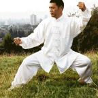 Taiji-circle-shifu Liu